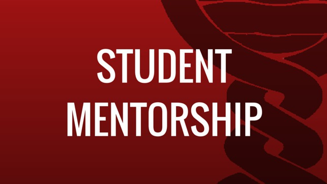 Student Mentorship Co-ordinator
