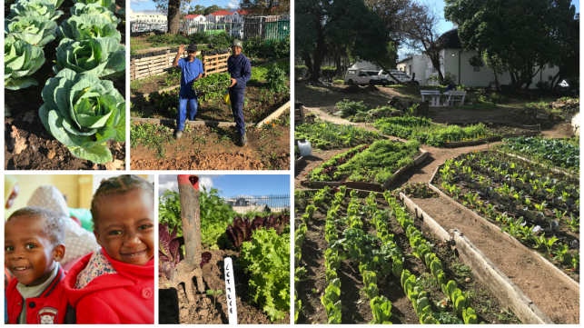 Save Yabonga´s Vegetable Garden and the healthy Nutrition!