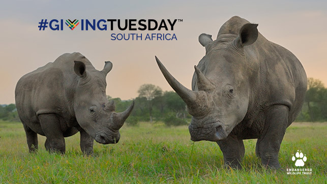 Hope For Conservation on #GivingTuesdaySA