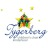 Tygerberg Children's Choir